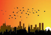 City background with flying birds — Stock Vector