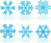 Set of winter snowflakes — Stock Vector
