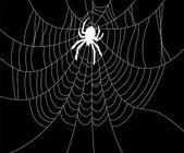Spider und web — Stockvektor