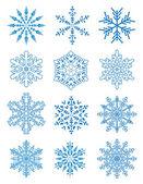 12 snowflakes — Stock Vector