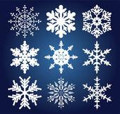 Set di 9 fiocchi di neve — Vettoriale Stock