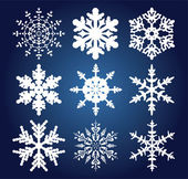 Set of 9 snowflakes — Vecteur