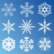 9 snowflakes — Stock Vector