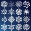 Vector snowflakes — Stock Vector #7890811