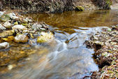 Landscape with creek — Stock Photo