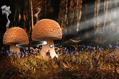 Fantasy image of toadstool houses in bluebell woods — Foto Stock
