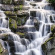 Beautiful waterfall cascades over rocks in lush forest landscape — Stock Photo