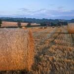 美しい黄金の時間干し草俵日没の風景 — ストック写真