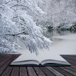 Creative concept idea of Winter landscape coming out of pages in - Stock Photo