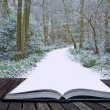 Creative concept ideof Winter landscape coming out of pages in — Stock Photo #7025631