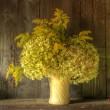 レトロなスタイルの花瓶で乾燥された花の静物に対する着用ウー — ストック写真