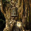 Fantasy fairytale miniature house in tree in forest — Stock Photo