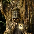 Fantasy fairytale miniature house in tree in forest - Stock Photo