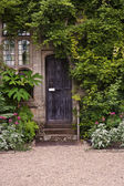 Wooden front door of old stone brick house covered in ivy and pl — Stock Photo