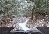 Kreativa koncept idé av vinterlandskap kommer ut sidor i — Stock fotografie