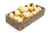Fresh new potatoes in rustic basket isolated on white background — Stock Photo