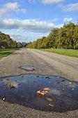 ウィンザー城 e でウィンザー グレート パークで長い散歩に沿って表示 — ストック写真