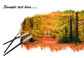 Creative concept image of paint brushes painting Autumn Fall for — Stock Photo