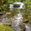 Stunning waterfall flowing over rocks through lush green forest - Foto Stock