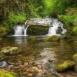 Stunning waterfall flowing over rocks through lush green forest — Stock Photo #7034866