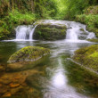 Stunning waterfall flowing over rocks through lush green forest — Stock Photo