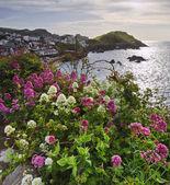 Vista del pueblo costero inglés a través de brillantes flores vibrantes en t — Foto de Stock