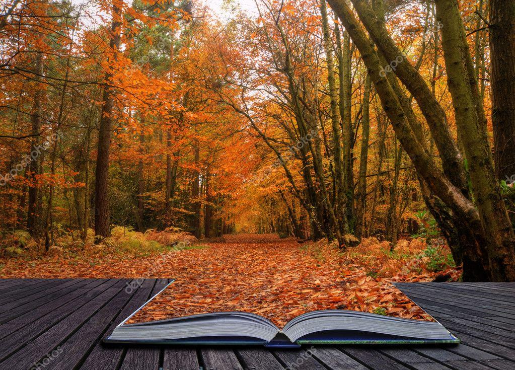 Сцена осень картинки
