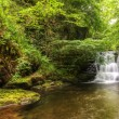 Stunning waterfall flowing over rocks through lush green forest — Stock Photo #7045338