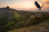 African fish eagle in flight over magical castle landscape — Stock Photo