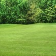 Vibrant image of golf course with flag and fairway in sunny weat - Stock Photo