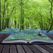 Постер, плакат: Magical book with contents spilling into landscape background
