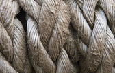 Close up of old rope texture background grunge look — Stock Photo