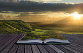 Magical book with contents spilling into landscape background — Stock Photo
