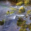 Beautiful close up of babbling brook in mountain forest — Stock Photo #7096940