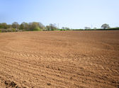 Ploughed cultivated farmland waiting for sowing of crop — Stock Photo