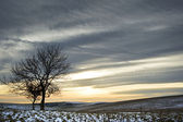Beautiful colorful sunset over Winter landscape — Stock Photo