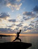 Silhouette of fit young woman doing stretching exercises on beac — Stock Photo