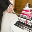 Detail of bride and groom cutting wedding cake - Stock Photo