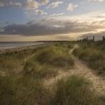 Moody sunset over grassy sand dunes at beach — Stock Photo
