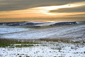 Winter snow landscape over fields with trees and glowing sunset — Stock Photo