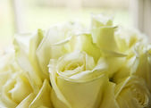 Macro close up of white roses in wedding bouquet — Stock Photo