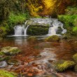 Waterfall flowing through Autumn Fall forest landscape — Stock Photo #7534962
