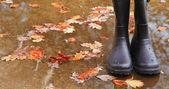 Autumn Fall concept wellington boots leaves and rain — Stock Photo