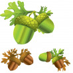 Acorn illustration — Stock Vector #7141553