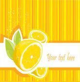 Fresh lemon menu — Stock Vector