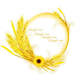 Sunflower with wheat decoration — Stock Vector
