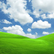 Stock Photo: Landscape grass sky