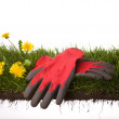 Gardening - Stock Photo