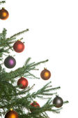 Christmas pine-tree — Stock Photo