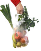 Grocery-bag — Stock Photo